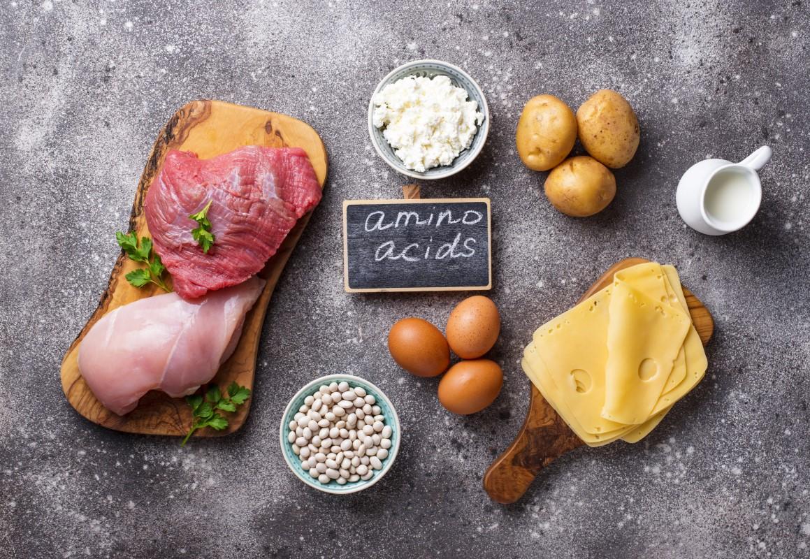 Gezondheidsvoordelen van essentiële aminozuren
