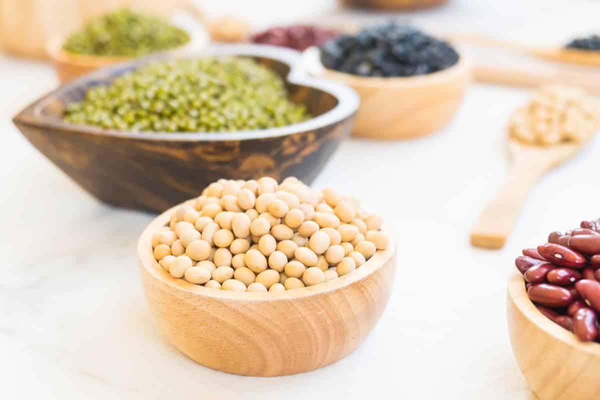 Bonen zijn voeding dat rijk aan eiwit is