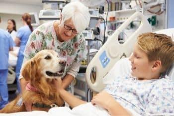 therapie met dieren goed voor ontwikkeling en zelfstandigheid